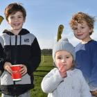 Connor Sinclair (7), of Waihola, Addison Corkhill (18 months), of Dunedin, and Archie Sinclair (5), of Waihola.
