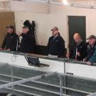 Otago Rural Livestock manager Hamish Loe (left) watches on as auctioneer Rob Fowler (second from left) calls for bids, while Paul Pearce, Chris Swale and Jon Newman of PGG Wrightson also keep a close watch. Photos: Ella Stokes
