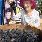 Winning a case of wine would be a fitting present for Waikanae woman Janet Jones, who celebrates...
