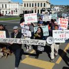 Members of the Waitaki Community Hospital Action Group make their way along lower Thames St...