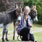 Judy Weild, of Milton, with her donkeys, Awapuni Mirabelle and Cherrybank Jax. Photos: Peter McIntosh