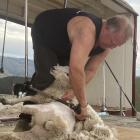 James Hall, of Middlemarch, won the ex-shearer section with a time of 50.78sec