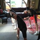 Tom (13), Liam (10) and Ben (10) Davis do their first-ever aerobics class, instructed by the TV...
