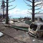 Cars were reduced to burnt-out husks by the fire as it spread  through Ohau Village. PHOTOS:...