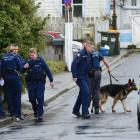 Police and a dog unit prepare to enter a Cornhill St property, in Northeast Valley, yesterday....