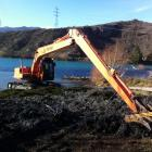 An excavator dumps weeds raked out of Lake Dunstan on Friday. Photo supplied.