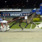 Mossdale Sue in winning form at Forbury Park last night, courtesy of a patient drive from Shane...