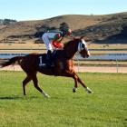 News Flash and jockey Jake Lowry are entering a new phase at Timaru today when they take on the...