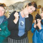 Emotional time: Gore SPCA Shelter volunteers (from left) Debbie Lawson, Andrea McMillan and...