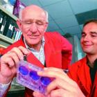 Dr Richard Webby (right) works with his mentor, fellow University of Otago graduate and world...