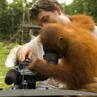 Queenstown-based cameraman Alex Hubert assists Ruby watch images of orangutans. Photo from...