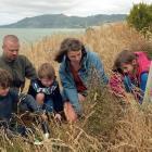 Day trip volunteers (from left) Solomon Easton (8), of Dunedin, Michael Thew, of Dunedin, Bailey...