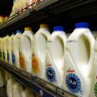 Milk production is forecast to fall in next decade. Photo by Jane Dawber.