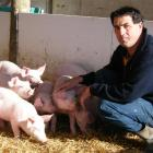 New Zealand Pork Industry Board chairman Ian Carter says although there are fewer pig farmers,...