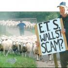 """The ETS is based on politics, not on facts."" - Lovell's Flat sheep farmers and..."