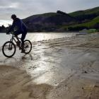 A cyclist pedals along Harington Point Rd yesterday. Photo by Peter McIntosh.