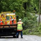 A Downer worker controls a section of the Glenorchy road where fallen trees brought down...