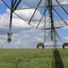 A pivot irrigator operates on Callum Kingan's Enfield farm. Mr Kingan spends up to $800 a day on...