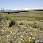 A view towards a protected wetland and the Southern Alps, from a hillside on Balmoral Station....