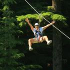 Adventure companies, such as ZipTrek Ecotours, Shotover Jet and Bungy, are some of Queenstown's...
