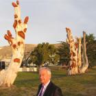 Alan McLay is appealing for funds to complete the carving of old macrocarpa trees that border the...