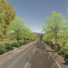 An artist's impression of what Miller Rd on the approach to Dunedin International Airport would...