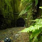 An entrance of the Caversham tunnel. Photo: Gerard O'Brien