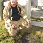 Arrowtown Fire Chief Garry Hall holds two pieces of earth, which were turned into glass when an...