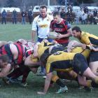 Arrowtown halfback Tom Whyld feeds the scrum during his team's match against Upper Clutha A at...
