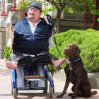 Barry de Geest,  with mobility dog Bentley, outside the Dunedin courthouse, wants the German...