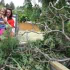 Bella (5) and Belinda Thomlinson with their destroyed vege patch after a high-wind vortex hit...