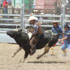 Black Beauty makes a dash for freedom as third generation rodeo competitor Hayden Tisdall gets to...