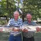 Bluff fisherman Jim McColl (left) and Murray Robertson, of Tapanui, show off a 2.1kg rainbow...