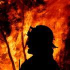 bushfire-sig.jpg