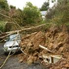 A tree and landslip pin down Polly Mustard's  Audi A3. Photos by Stephen Jaquiery.