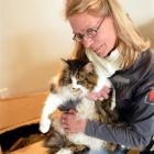 Clare Gardner sits near the hole in her lounge  cut by a builder to rescue her cat Meg from...