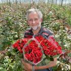 Commercial rose grower John van Delft, of Mosgiel, displays bunches of his signature rose, Black...
