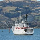 Cromwell Townsend approaches the Victoria Channel in Otago Harbour yesterday. Photo by Stephen...