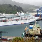 Cruise ship Sea Princess, the container vessel Bahia Negra and log-carrying ship DL Marigold ...