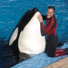 Dawn Brancheau, a whale trainer at SeaWorld Adventure Park, poses while performing. Brancheau was...