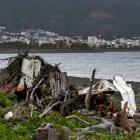 Debris on Jamaique beach in Saint-Denis, on Reunion island of La Reunion.REUTERS/Jacky Naegelen