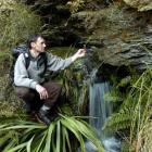 Doc botanist Mike Thorsen examines the plant life in a gorge in the Macraes area. He discovered a...