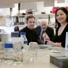University of Otago medical scientists, geneticist Dr Tony Merriman, rheumatologist Prof John...