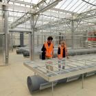 Dunedin Botanic Garden botanical services manager Tom Meyers and propagator Alice Lloyd-Fitt (at...
