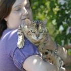 Dunedin cat breeder Teresa Richards considers Bengal cat Chrystal Cleopatra poses no more danger...