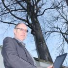 Dunedin City Council landscape architect Barry Knox inspects a  lime tree  in  York Pl as part of...