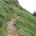 Dunedin City Council staff fear trampers using this unauthorised track built below a cliff at...