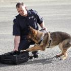 Dunedin police dog handler Sergeant Craig Baron and 5-year-old police dog Evo, at the National...