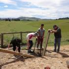East Otago High School years 11 and  12 pupils (from left) Matt Perkins, Dylan Holloway, Logan...