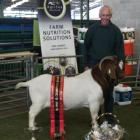 Enfield farmer Owen Booth with his Supreme Champion Boer Goat at the Canterbury A&P Show last...